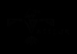 logo_vp
